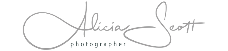 Alicia Scott - Wellington Photographer
